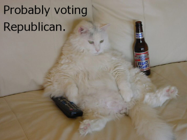 Lazy GOP cat